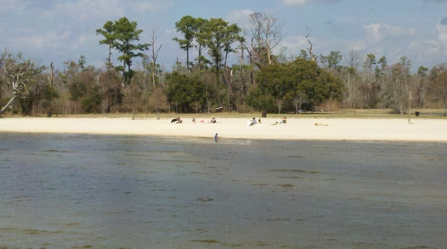 North Shore of Lake Ponchartrain, Louisiana, February 2011