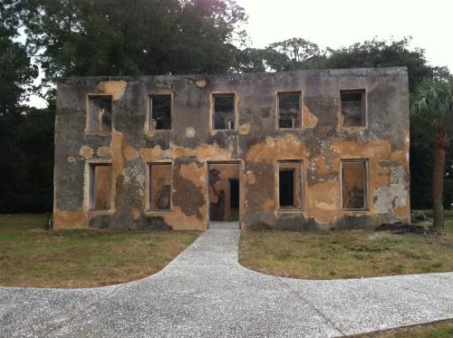 1736 Horton House (tabby)