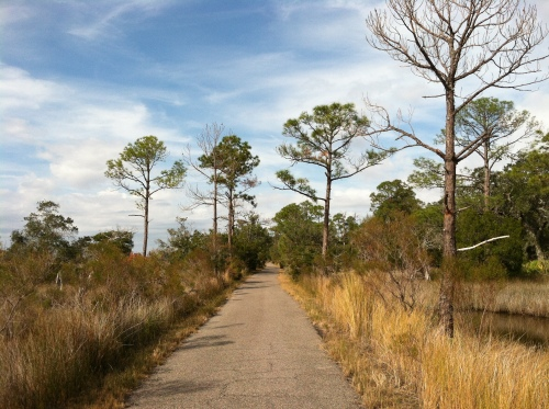 bike/walk path