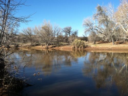 Agua Fria River near Montezuma's Castle.
