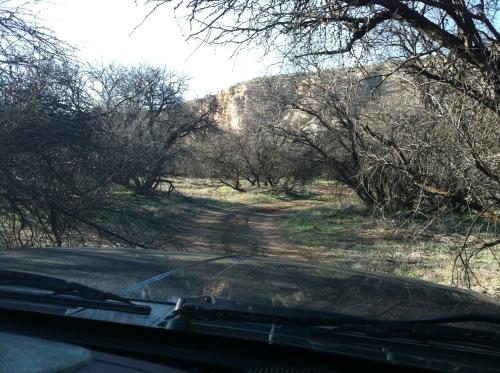 Exploring Desert Roads