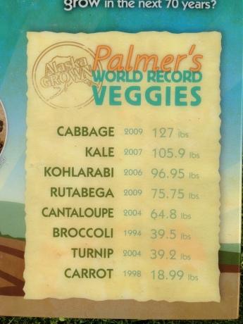 Palmer's World Record Veggies