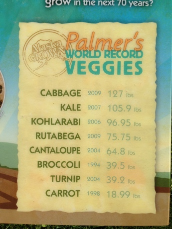 Palmer's World Record Veggies