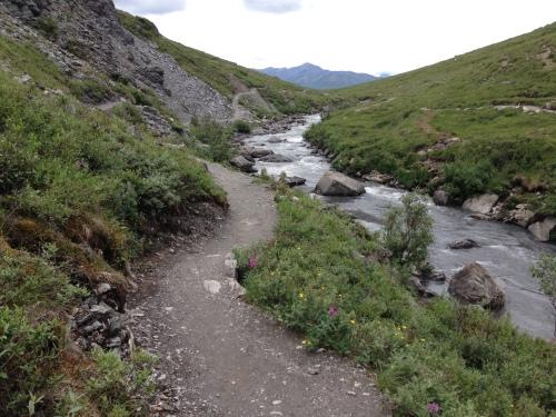 Mile 15 hike at Denali Park Road