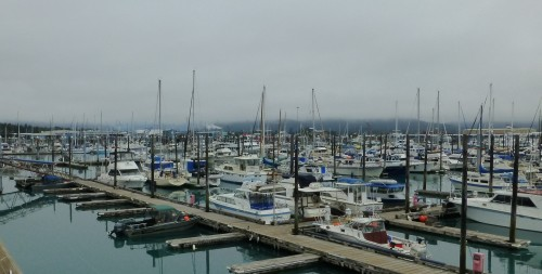 Marina at Seward