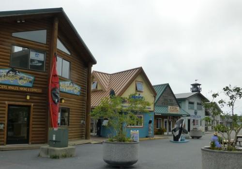 Seward Tours and Fishing Charter Companies on Resurrection Bay