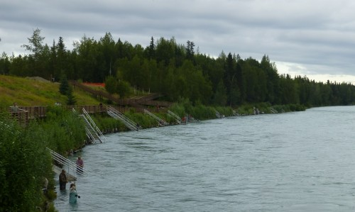 Salmon Fishing on Kenai River