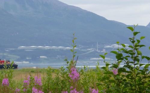 Alaska Pipeline Terminus