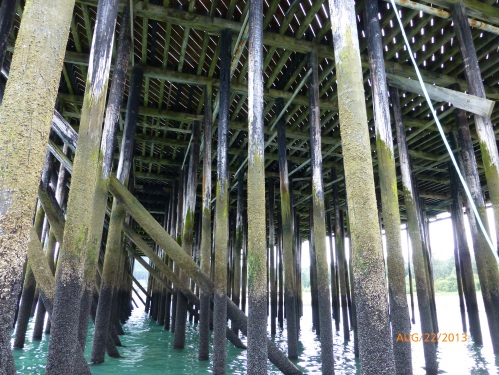 Under the Dock at Low Tide