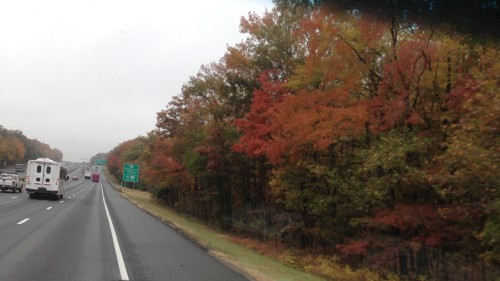 Colorful Drive
