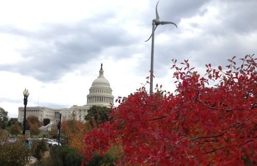 View of Capitol from the Botanical Garden
