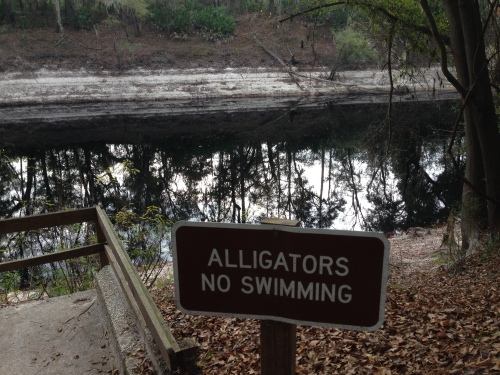 Alligators, No Swimming
