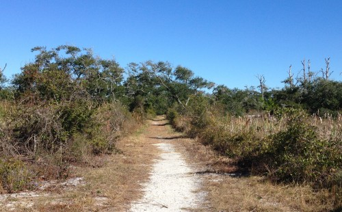 Fort Pickens Nature Trail