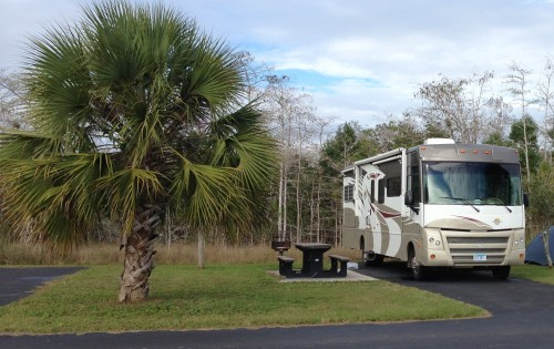 Midway Campground, #7, Everglades, Florida