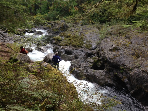 Salmon Cascades, Olympic National Park, Washington