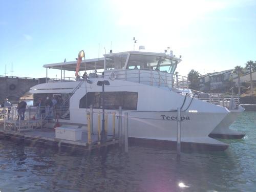 Casino Ferry