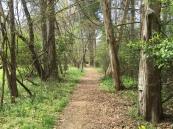 walking path Mount Locust