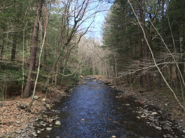 Dingmans Creek