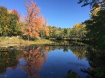 Ashuelot River Park, Keene NH